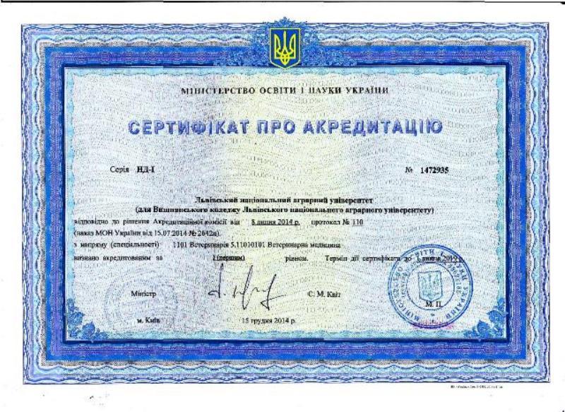 sertyficat_vm_big